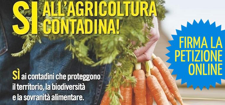 agricoltura-contadina-header